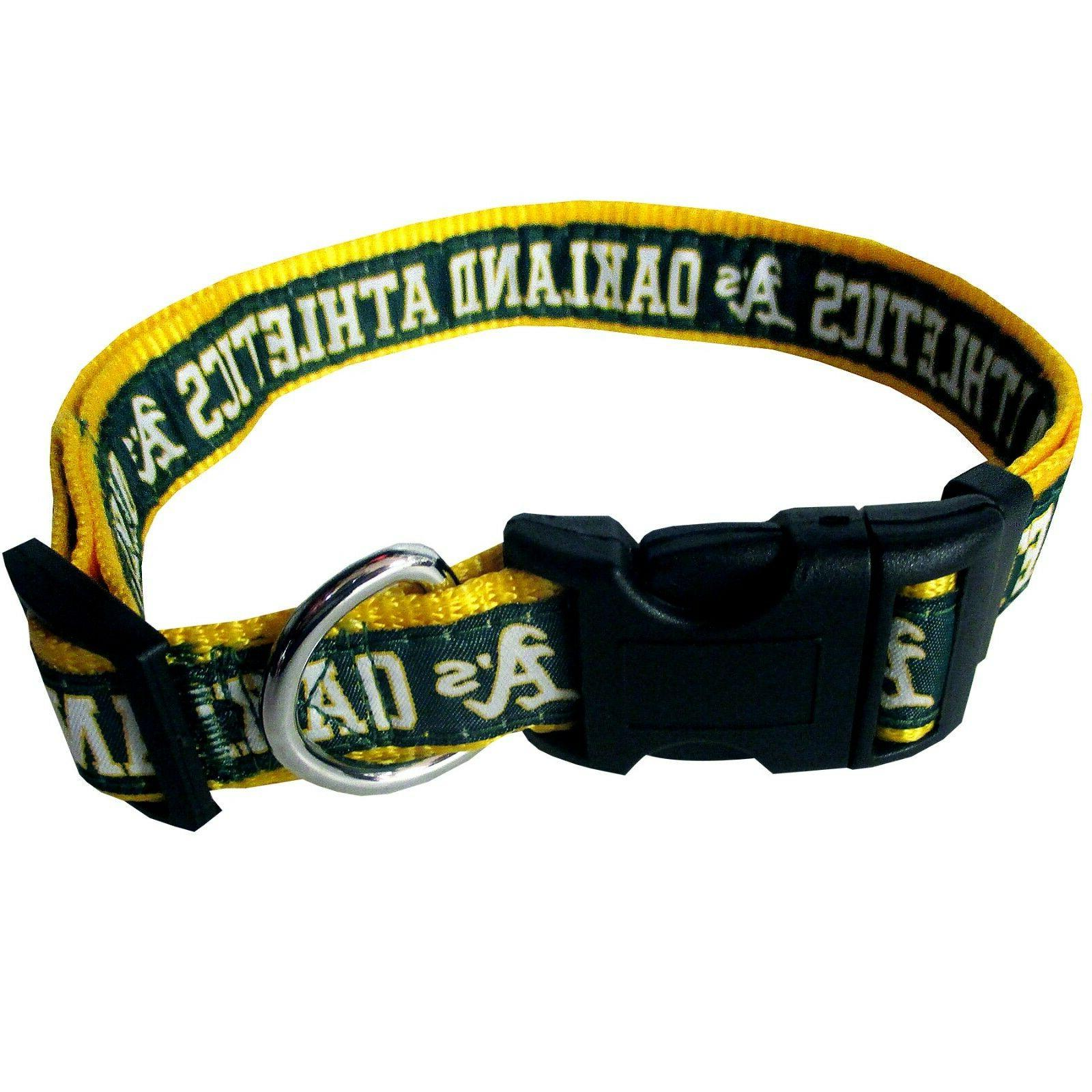 Pets First Collar, Teams Available. New Baseball