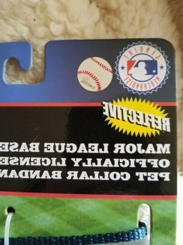 S, M Seattle Baseball Cat adjustable